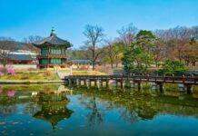 Những trải nghiệm nên thử vào mùa thu khi đi du học Hàn Quốc